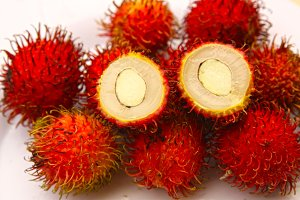 rambutan berries fruit close up photo