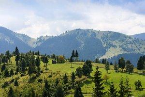 Mountain landscape in Bucovina