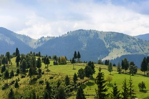 Mountain landscape in Bucovina