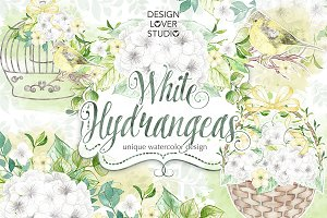 Watercolor White Hydrangeas design