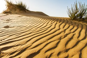 The sand of the desert at sunset .