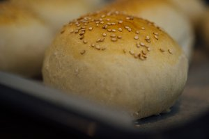 Crusty sesame bun in close-up