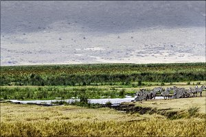 Ngorongoro, National Park