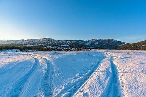 Landscape winter branching roads