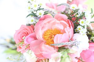 Peony flower background