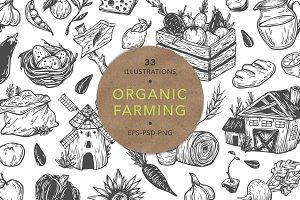 Organic Farming. Fresh market.