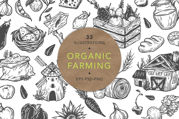 Organic Farming Fresh Market