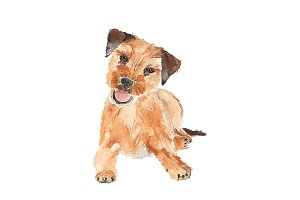 Watercolor Dog Cute Border Terrier
