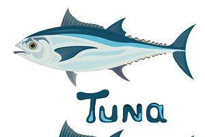 tuna, cuts, vector illustration