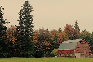 A Barn in the Fall