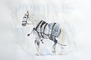 Carriage horse watercolor