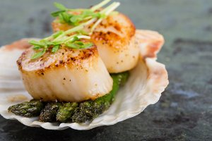 Sea shell with scallops
