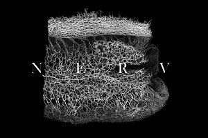30 NERV Textures vol.1