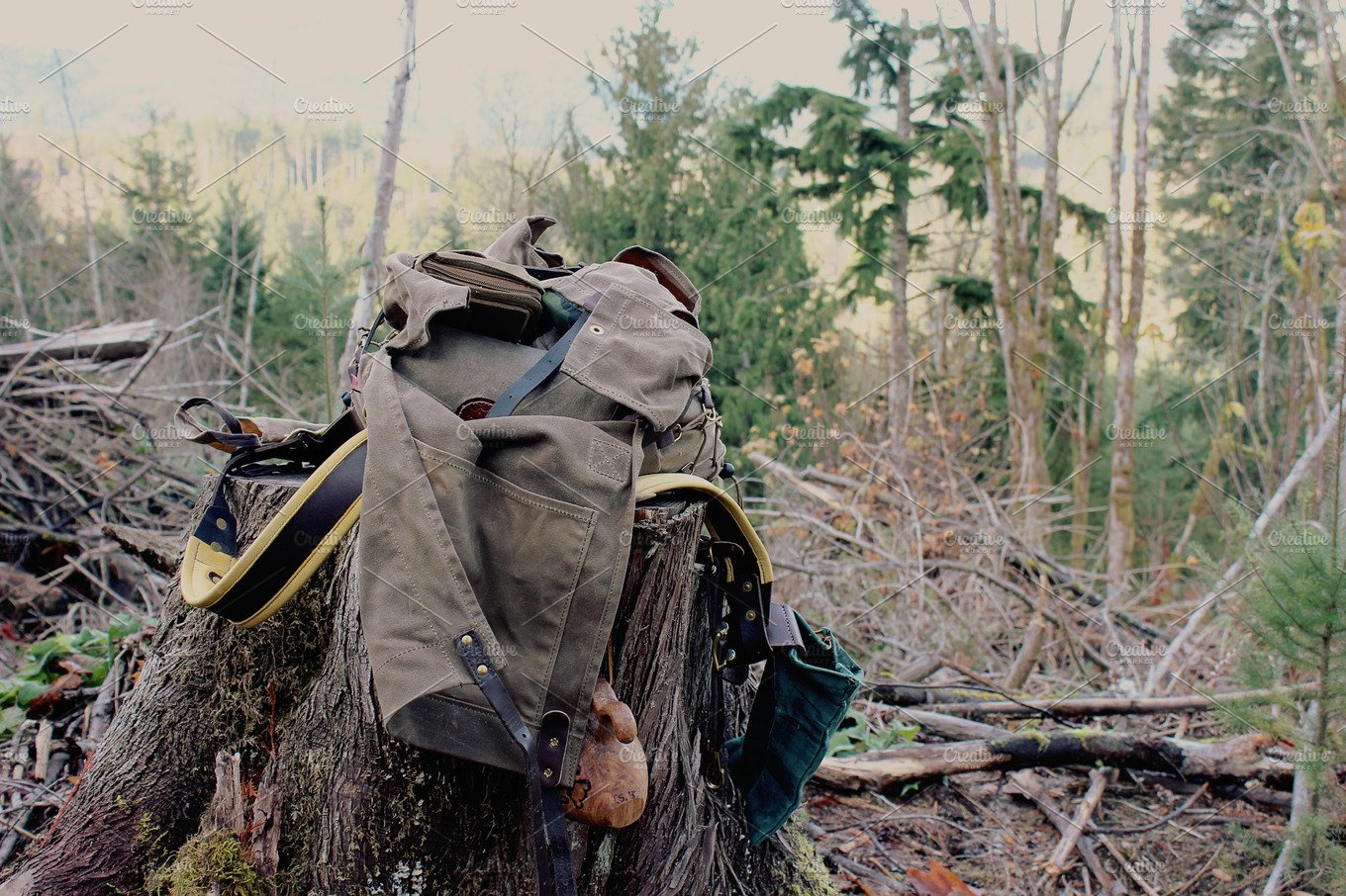 open bushcraft backpack on a stump nature photos