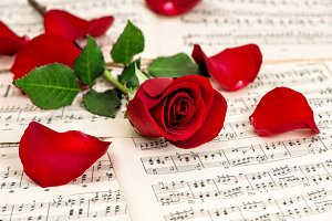 Red rose flower music notes