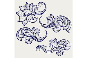 Floral baroque engraving elements