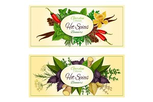Hot spices, seasonings, spicy herbs vector banners
