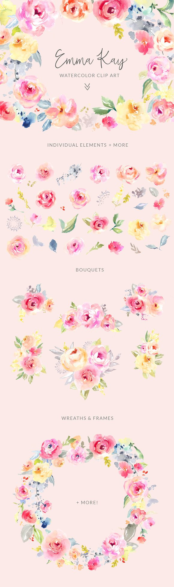 Watercolor flowers png clipart illustrations on creative market - Emma Kay Watercolor Clip Art Flower Illustrations