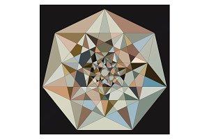 Vector Multicolor Geo