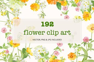 192 Wildflowers clip art.
