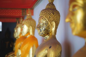 Line of sitting gold buddha statues in Wat Pho temple in Bangkok, Thailand. Traditional symbol of buddhism