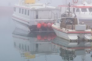 Foggy morning at a harbor