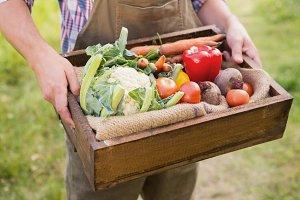 Farmer carrying box of veg