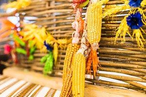 Corn decoration hanging on fence