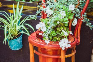 Old wooden chair with flowers