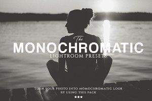 The Monochromatic Lightroom Presets