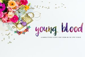 Young Blood Brush Font