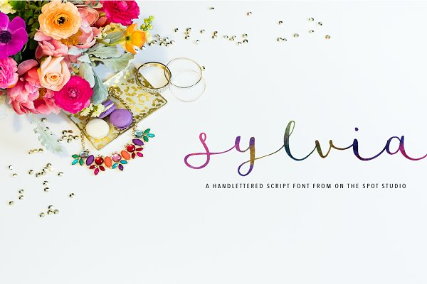 Sylvia Script - lowercase lettering