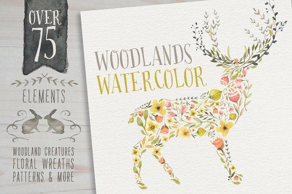 Woodlands Watercolor megapack
