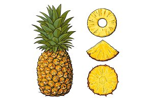 Whole pineapple and slices - peeled, unpeeled, wedge, vector illustration