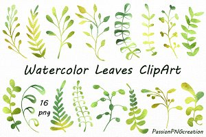 Watercolor leaves clipart