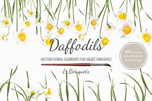 Vector object brushes. Daffodils
