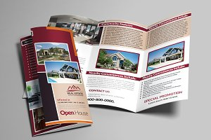 Real Estate Trifold