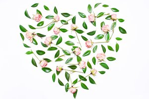 heart.Pink flowers, green leaves