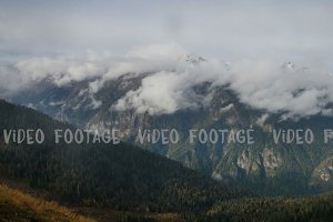 timelapse of high snowly mountains with clouds and spruce forest