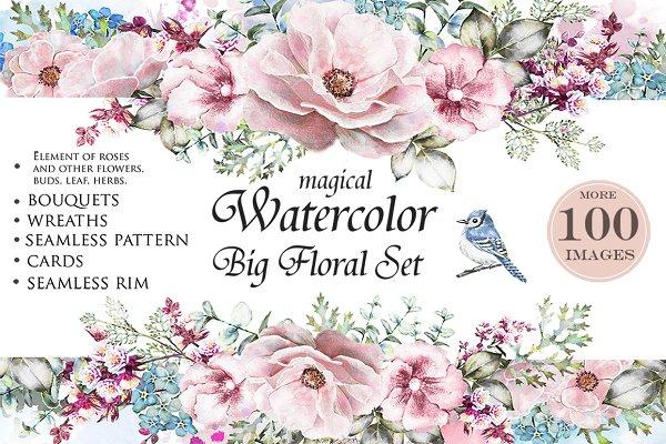 Watercolor floral design set. Flowe…