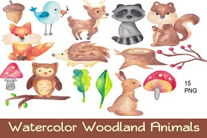 Watercolor Woodland Animals Clip Art