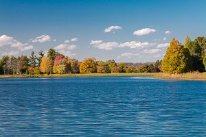 Lake and autumn forest