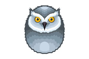 Owl Bird Icon