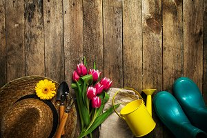 Spring concept with gardening tools