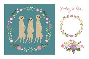 Meerkats illustration
