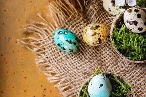 Colorful Easter quail eggs