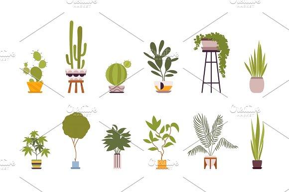 Set Of Twelve Green Floor Plants In Retro Pots
