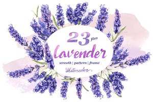 Lavender PNG flowers in watercolor
