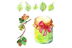 Watercolor gooseberry berry jam jar