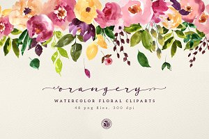Orangery Watercolor Flowers